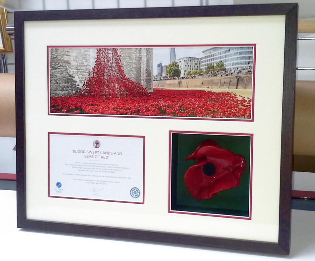 poppy large frame1